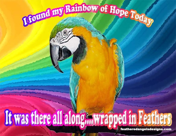 Rainbow of Hope with Blossom