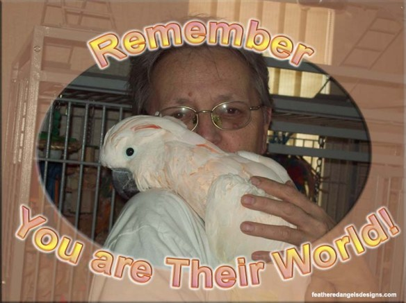 Remember you are their world
