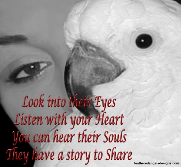 Look into their eyes black and white 4