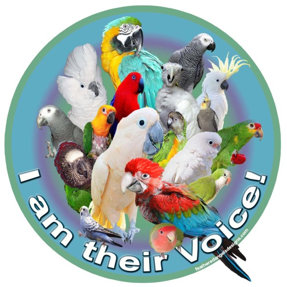 I am their voice 3